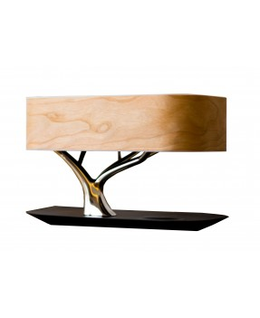 Tree of Light - A Dimmable...